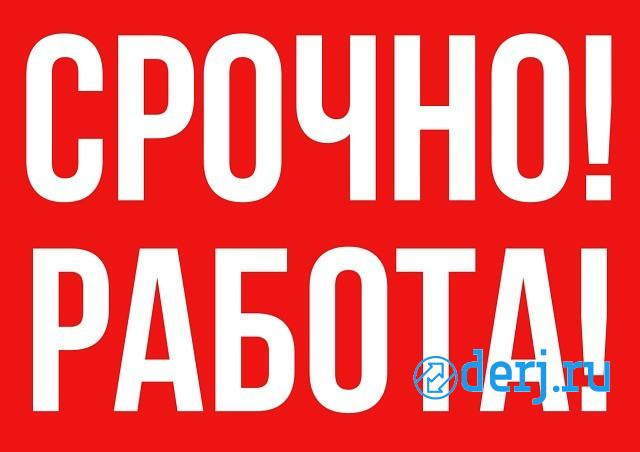 Администратор в крупный интернет магазин,  Ростов-на-Дону